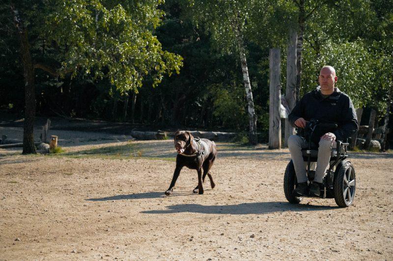 Bi-Go - de hond uitlaten in de bossen.
